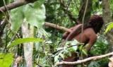 Останнього жителя дикого племені Амазонії показали на відео